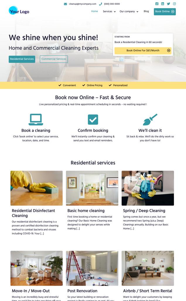 Cleaning Website Ace Premium