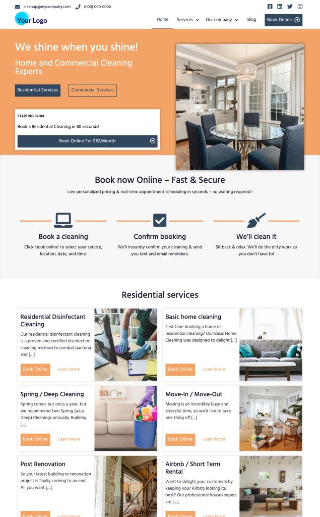 Cleaning Website Triumph Premium