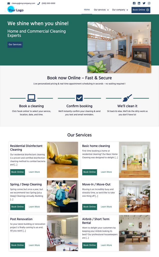 Cleaning Website Triumph Standard